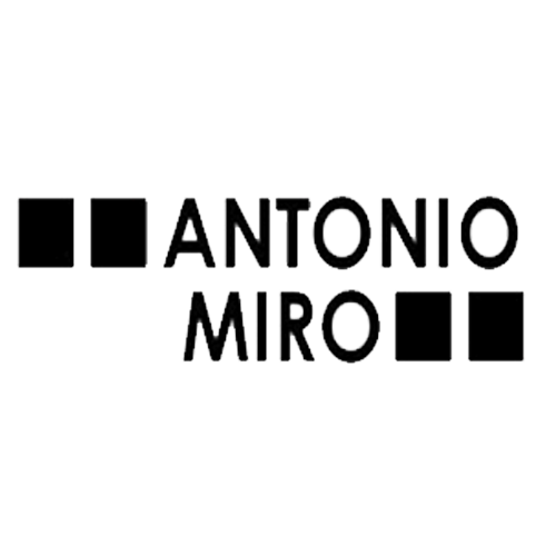 Antonio miró
